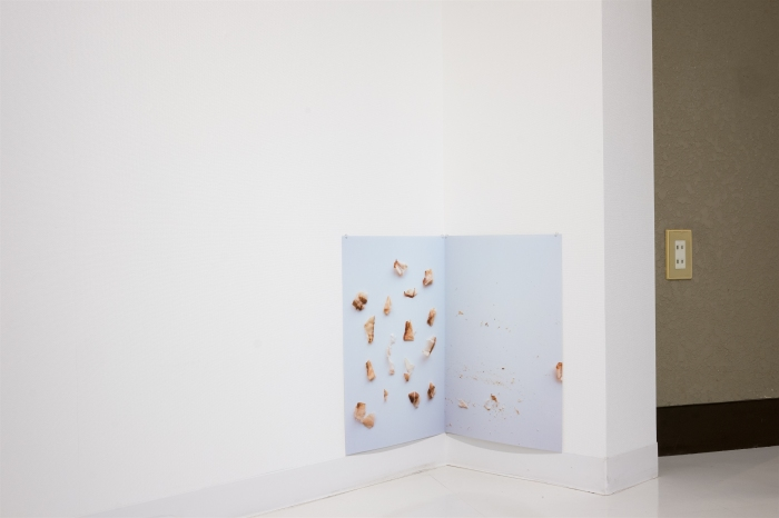 Ida Lawrence - Dancing Fish Flakes 2015 DSCF2917_