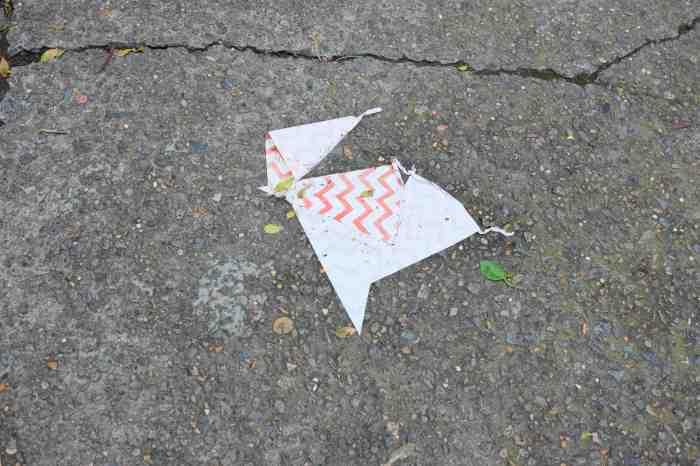 Ida Lawrence - Glebe Streetscape photo 22