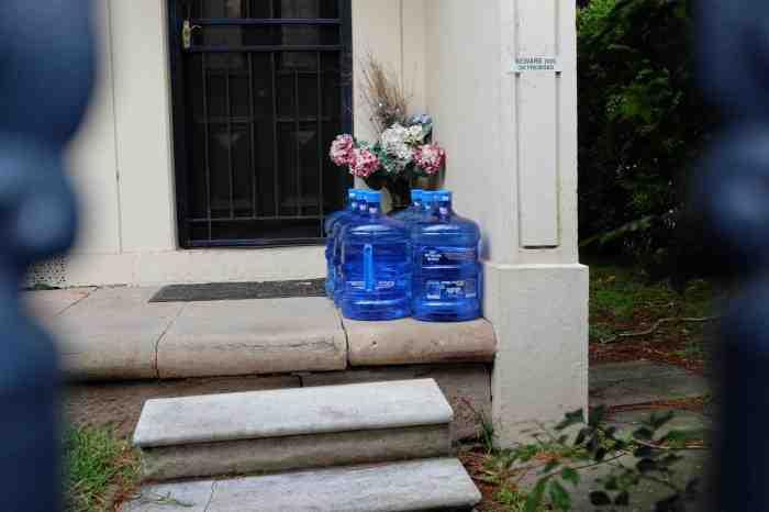 Ida Lawrence - Glebe Streetscape photo 33